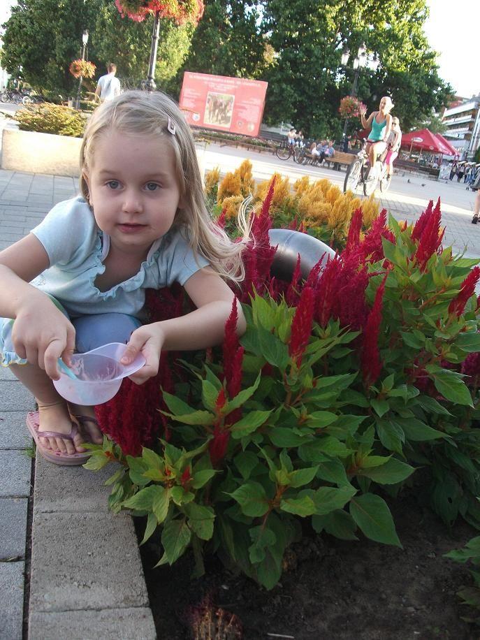- 2011. augusztus